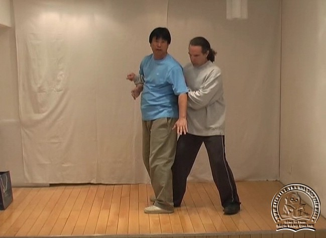 Yin Style Babua Fighting Methods - screenshot 5